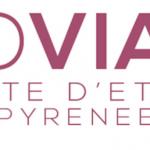 Intervention sur la classe inversée lors de l'université d'été Ludovia 2017